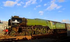 IMG_9231 (LincolnWarrior) Tags: steamtrain train transport steam tornado 60163 railway