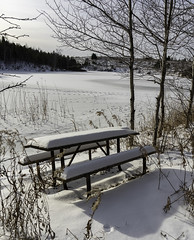 Too cold for a picnic (mpgranger) Tags: winter snow sun scenic view table picnic outdoor nature tree trees