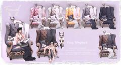 Foxwood - Cozy Wingbacks & Kitties (Dani @ Foxwood/Alchemy/Birdy/Foxes) Tags: sl screenshot secondlife foxwood wingback cat kitty cute decor meshh c88 mesh collabor88