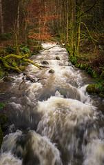 The Glen (axlrose2112) Tags: pentaxart river scotland nature water outdoors travel