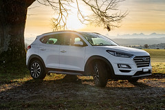 Hyundai Tucson (Role Bigler) Tags: 16turbo 4x4 awd auto backlight baum berge fujifilmxpro3 fujinonxf35mm12rwr gegenlicht hyundai natur sonne tree tucson alpen alps automobil car mountains nature schweiz suisse sun swissalps switzerland whitecar