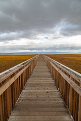 Vanishing Point (Jill Clardy) Tags: baylands california northamerica paloalto savethebay usa winter 201912079l8a1002 vanishing point boardwalk marshes marshland grasses clouds cloudy vertical