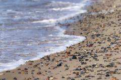 Skagen_Dänemark_IMG_0018 (milanpaul) Tags: 2018 dänemark juli landscape landschaft meer nordjütland nordsee skagen skagerrak sommer strand