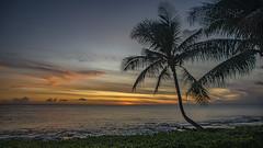 Paradise Cove (Instagram: MAS Media Labs) Tags: adventure adventureswithyou beach canon hawaii islands kauai lifeofadventure luau masmedia masmedialab masmedialabs masmedialabscom maui mikeshikes pacificocean paradise sunset travelwithme vacation