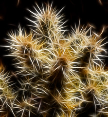 Cholla in the Abstract (arbyreed) Tags: arbyreed cactus cholla fractalius filter slider plant processed artsy