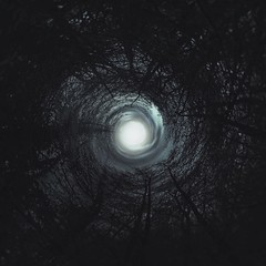 Badirudi mundua bukatzear dela. (Jaione Dagdrømmer) Tags: night surrealist abstract darkness dark light forest trees