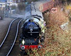 IMG_9200 (LincolnWarrior) Tags: steamtrain train transport steam tornado 60163 railway