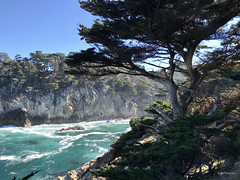 Big Sur Point Lobos (Wonder Woman !) Tags: pointlobosstatepark bigsur california monterey peninsula pacific ocean cellphone