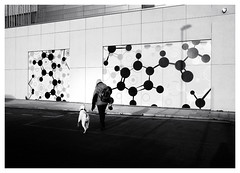Doggy DNA (Dave Button) Tags: fuji fujifilm acros silverefexpro shadow light shadows xf23mmf2 nottingham xpro2 bw blackandwhite mono monochrome person people dog labrador contrast street streetphotography