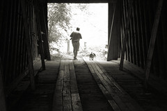 Brian and Jack on Cromer's Mill Covered Bridge (Mike McCall) Tags: copyright2019mikemccall photography photo image usa culture southern america thesouth unitedstates northamerica south georgia history heritage tradition county franklin architecture covered bridge cromer cromersmill brian jack beagle dog nailscreek nail creek bw blackwhite monochrome monotone photographer camera wooden