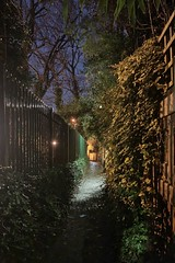 Passage into the Night (marc.barrot) Tags: shotoniphone nightphotography urbanlandscape uk nw3 london hampstead springwalk