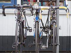 Omloop 't Verzetje 2017 - 019 (TWC 't Verzetje Bemmel) Tags: tverzetje evenement wielrennen bemmel omloop2017 gld nederland