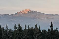 Sněžka z Černé hory (Ondrej V.) Tags: snezka krkonose czechrepublic giantmountains landscape sunset mountain ridge outdoor