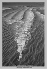 Dragon Skeleton (Virtual Reality in film) Tags: blackandwhite deathvalleynationalpark patterns texture sand sanddune mud rocks erosion