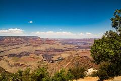 Grand Canyon (Danny-ltd) Tags: tree red mountain sky colorado arizona grand canyon
