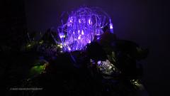 Castle on the Mountain (Mars Mann) Tags: lights night colourful dark marsmannphotography scenery flickrmarsmann capture beautiful lightanddark green purple glowinglights olympusem1 reflectivelight lowlight mirrorless camera silence