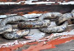 MM Chain (holly hop) Tags: macro macromondays chain rust peelingpaint old wood 3inch