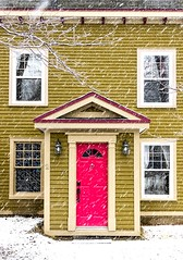Pink Door (Karen_Chappell) Tags: pink door houes home green wood wooden paint painted clapboard house nfld newfoundland snow snowing snowy weather december winter stjohns downtown city urban atlanticcanada avalonpeninsula eastcoast canada canonef24105mmf4lisusm white windows trim
