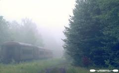 thendara Train Station (freshairphoto) Tags: thendara train station adirondack scenicrailroad fog cars path trees artspearing