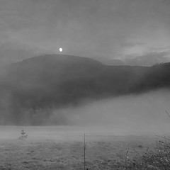 In the Mist: Moonrise (jcurtis4082) Tags: yroad squalicum fog field ebike squalicumimages camera bw blackwhite sundown mist