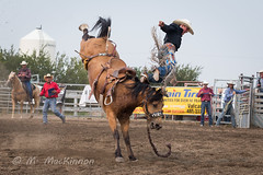 Vulcan Rodeo 2018 (tallhuskymike) Tags: vulcan alberta rodeo cowboy horse horses western 2018 action event outdoors sidhartung