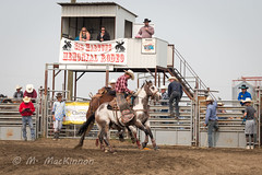 Vulcan Rodeo 2018 (tallhuskymike) Tags: vulcan alberta rodeo cowboy cowgirl horse horses western 2018 action event outdoors sidhartung