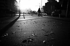 (ademilo) Tags: street streetphotography streetlight sky sunset sun sunlight sunshine shadows shadow city cityscape citylife contrast tokyo town townscape transportation monochrome monotone