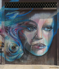 PERUVIAN GRAFFITI (paramonguino) Tags: p1650753jpg1 lima perú graffiti streetart