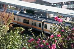 DSC_9467 (tohru_nishimura) Tags: nikond300s sigma1770284 nikon hino train station tokyo japan