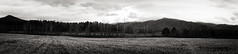 The beaten path i (Sarah Rausch) Tags: thegreatsmokymountains cadescove pano panoramic monochrome monochromemonday mountains tennessee tennesseetheonlyplacetobe hmm blackandwhite bw landscape kitlens sony
