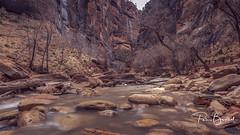 Narrows at Zion Canyon (pboolkah) Tags: springdale utah unitedstatesofamerica water river rocks trees nature mountains zion