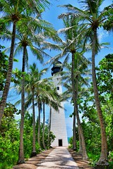 Lighthouse 1 (Natidu Photography ( in-out )) Tags: florida usa travel destination vacation blue sky trees l lighthouse palmiers palmtrees green vert