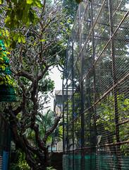 Freedom and Captivity. (Gagan.Sharma) Tags: birds birder captivity freedom nature zoo conservation