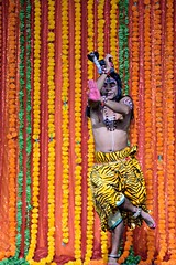 Mayurbhanj Chhau #48 (*Amanda Richards) Tags: mayurbhanjchhau dancers dance dancing dancer hindu indian kendra guyana georgetown guyanahindudharmicsabha performance performer 2019