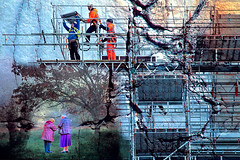 We lived by the tree (Nellie Vin) Tags: wall concrete building builders construction women tree land urbanization nellievin photography color surrealism layers images