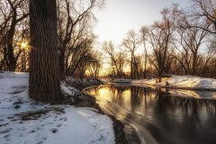 Morning Light On The Minnesota River (j-rye) Tags: ilce7rm2 landscape rokinon12mmf20 a7rm2 ice light mirrorless morningsun nature ninemile sky sony sonyalpha starburst sunrise trees water sunburst