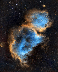 IC1848 The Soul Nebula (eBear Foto) Tags: astrometrydotnet:id=nova3797392 astrometrydotnet:status=solved ic1848 astro nebula zwo1600 losmandy