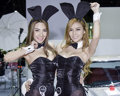 The 7th Bangkok Used Car & Imported Car Show 2015 (krashkraft) Tags: 2015 allrightsreserved beautiful beauty boothbabe bunnyfearz bunnysodaize gorgeous gridgirl krashkraft playboy playboybunny playboythailand playmate pretty racequeen tachadasuwannagudsodaize the7thimportedcarusedcarshow2015 the7thusedcarimportedcarshow2015 thitithipsingheyfearz usedcarimportedcarshow usedcarshow พริตตี้ มอเตอร์โชว์ เซ็กซี่ โคโยตี้ babe
