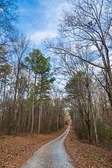 Road With No Name (Richard Melton) Tags: road forest trees sky clouds alabama