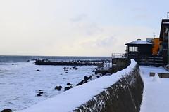 (Chawei Lee) Tags: view natural m50 canon 北海道 雪 travel sapporo otaru japan snow