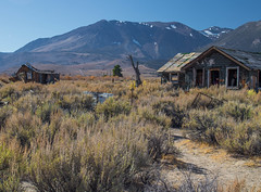 the old homestead (reserves13) Tags: abandoned decay easternsierra leevining mountains easterncalifornia