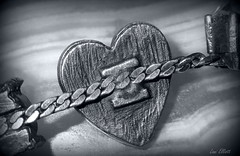 CHAIN of HEARTS.....Macro Mondays ! (Lani Elliott) Tags: heart metal necklace heartnecklace grey monochrome macro upclose closeup macrounlimited macrophotography texture textured pattern patterned bright light shiny lani elliott lanielliott chain macromondays