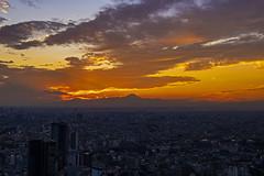 Tokyo Sunset (Shiger Miy) Tags: beautiful nature japan japanese winter sky sunset tokyo shibuya landscape