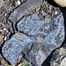 Vivianite on phosphorite (Meade Peak Member, Phosphoria Formation, Permian; Astoria Hot Springs roadcut, Teton County, Wyoming, USA) 3