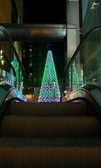Liverpool ONE Christmas Tree (MerseySpyder) Tags: christmas christmastree christmaslights escalator unedited nofilter liverpoolone liverpool merseyside amateurphotographer phonephotography uk