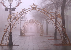 Winter Lace (Marija Mimica) Tags: city fog silhouette street belgrade zemun new year christmas
