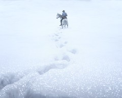 (HodgeDogs) Tags: winter horse reddeadredemption2 rockstargames snow games gaming people explore