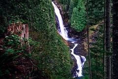 Wallace Falls (owen galen jones) Tags: seattle seattlewashington cascades cascademountains washingtonstate wallacefalls waterfall water stream hiking hike trees forest longexposure nature
