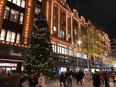 Harrods At Christmas (Marc Sayce New 1) Tags: harrods shop tree lights london england christmas winter december 2019 notrealtags bikini speedo topless naked nude milf fetish lingerie underwear butt bum hot mature boobs sex girl ass panty panties sexy stockings lycra pantyhose tights nipples swimsuit naturist candid foot feet wife pants kinky boots knee high leather g string thong shorts