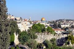 Jerusalem (ippnw Deutschland) Tags: israel palästina palestine bethlehem palestinian palästinenser frieden nahost begegnung reise ärzte jerusalem tempelberg felsendom